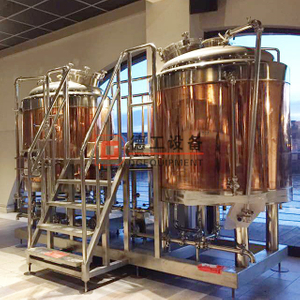 Turnkey breweries two vessels classic 8.5BBL 10HL 1000L wort brew machines for restaurants