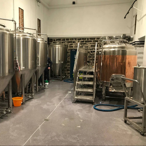 500L 5HL Restaurant/brewpub Used Craft Microbrewery Customized Beer Brewing Equipment for Sale