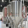 1000L 800L 600L Fermentation Vessel Beer Stainless Steel Fermenters Insulated Conical Cylinder brewery tanks Cost