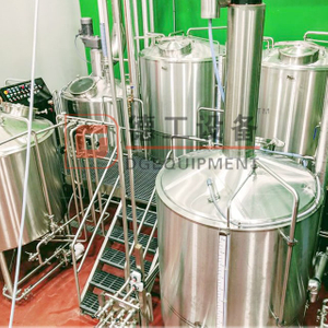 600L(6HL) High Quality Brewhouse/ Conical Fermenter Beer Brewery Equipment