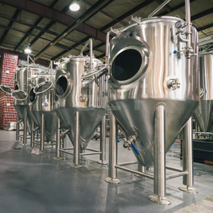 10HL 20HL 30HL Stainless Steel 304 Conical Vertical Beer Fermentation Tank Isobaric Unitank for Sale